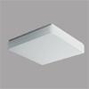 TILIA 2 - P�isazen� sv�tidlo, z�kladna kov, povrch b�l�, difuzor polykarbon�t nebo PMMA op�l, pro ��rovku 40W, nebo pro z��ivku 32W/36W/22W/40W, 230V, zv�en� kryt� IP44, rozm�ry 400x400mm, h=70mm, �chyt st�n�tka klapky